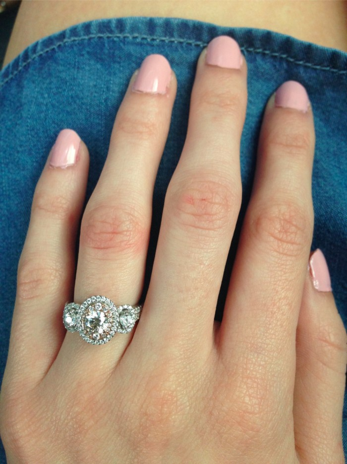 Marriage Proposal at phipps conservatory and botanical gardens_2