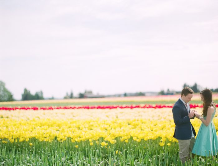Image 3 of David and Sofia's Sweet Proposal in a Tulip Field