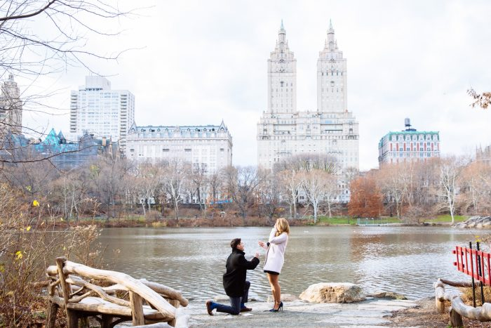 Photoshoot Marriage Proposal New York City Central Park