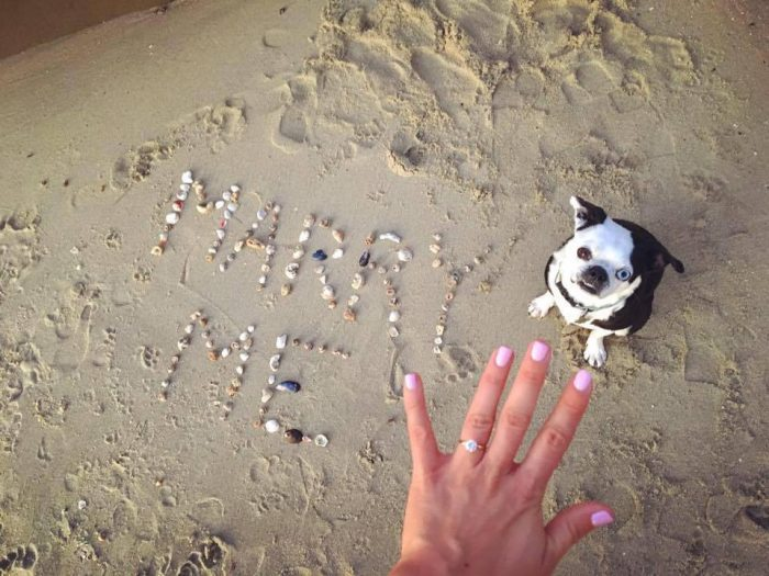 Beach Proposal Ideas For Your Sweet Sandy Marriage This