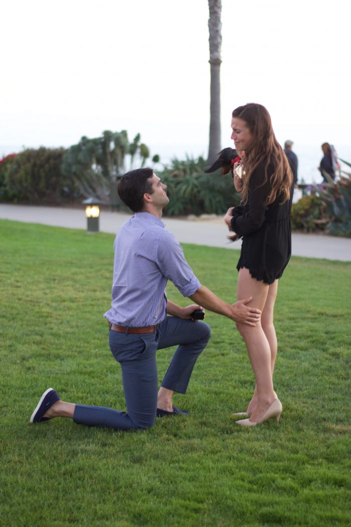 Engagement 25