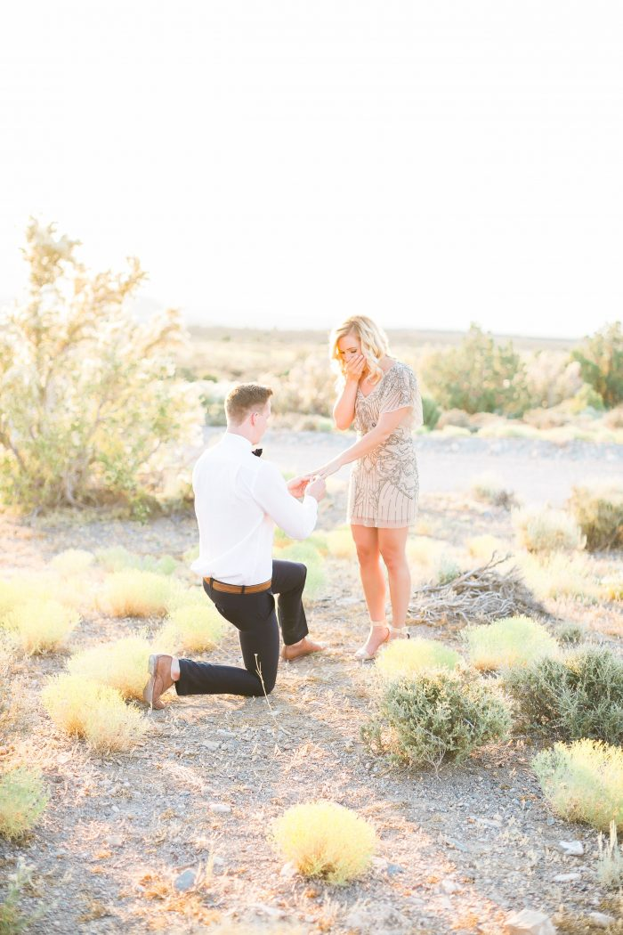 View More: http://j-annephotography.pass.us/ashleywill