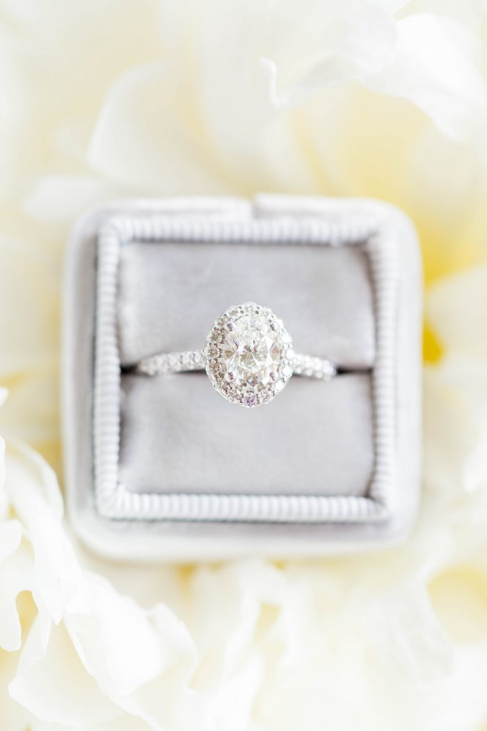 View More: http://hopetaylorphotographyphotos.pass.us/erika-and-josh-proposal