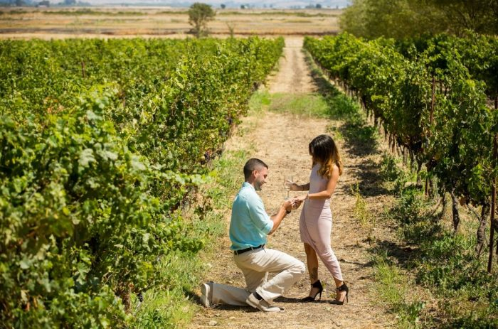 Stephanie's Proposal in Jacuzzi Family Vineyards Nappa Valley, California