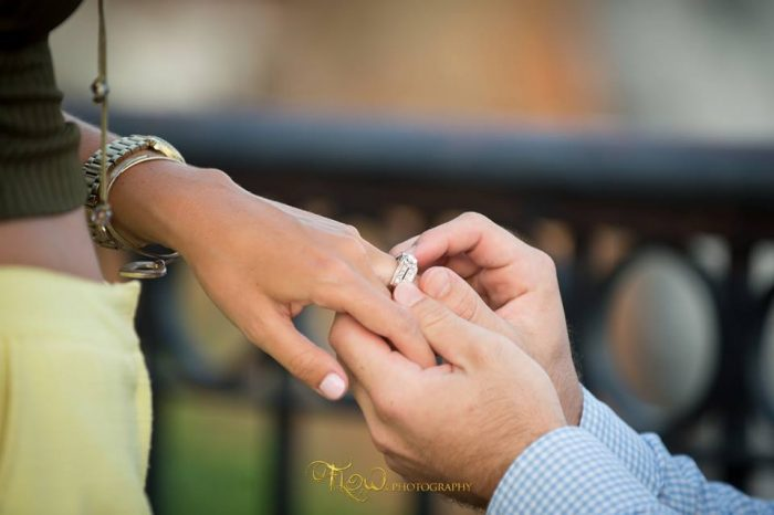 Proposal8