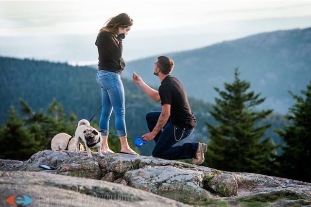 Engagement Proposal Ideas in Bar Harbor, maine