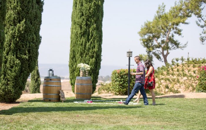 Marriage Proposal Ideas in Callaway winery