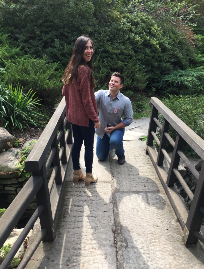 Engagement Proposal Ideas in Indianapolis Museum of Art Gardens