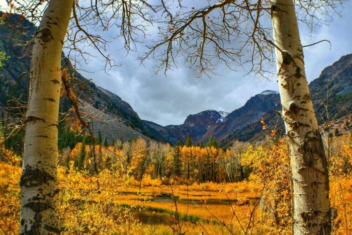 miranda-and-ricky-proposal-lundy-canyon
