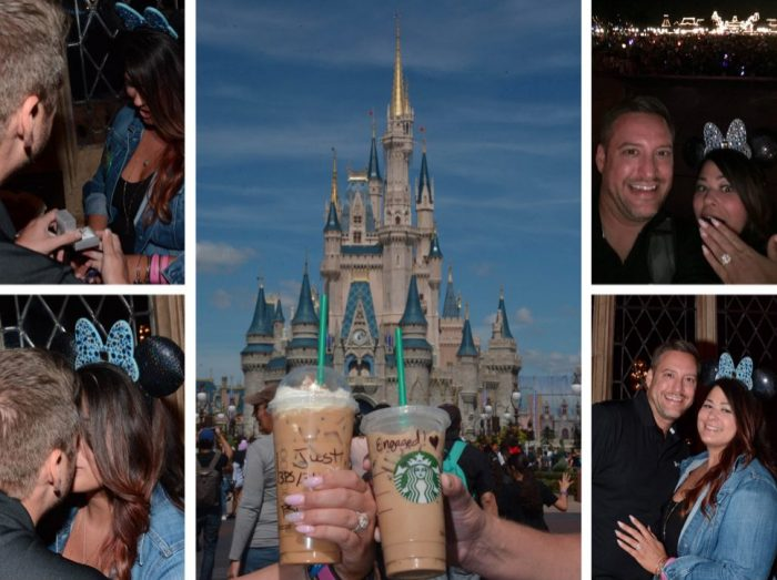 Teresa and Stephen's Engagement in Cinderella's Castle