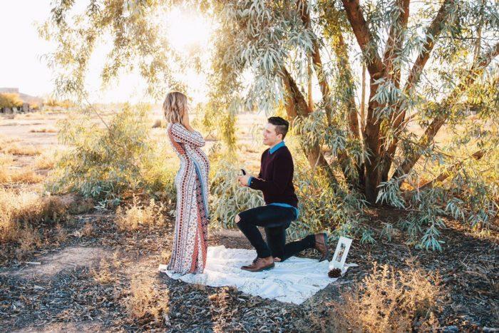 Haley's Proposal in Gilbert, AZ