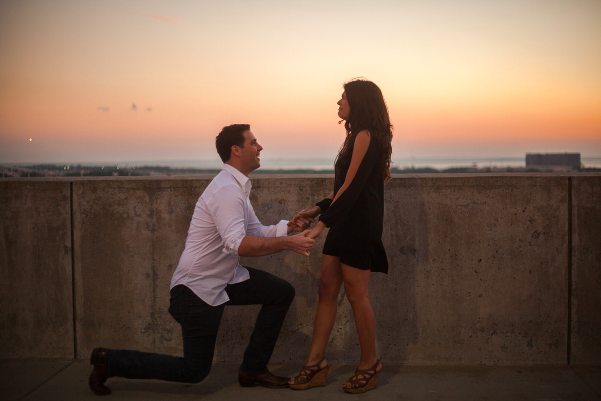 using-dog-to-propose-marriage-46