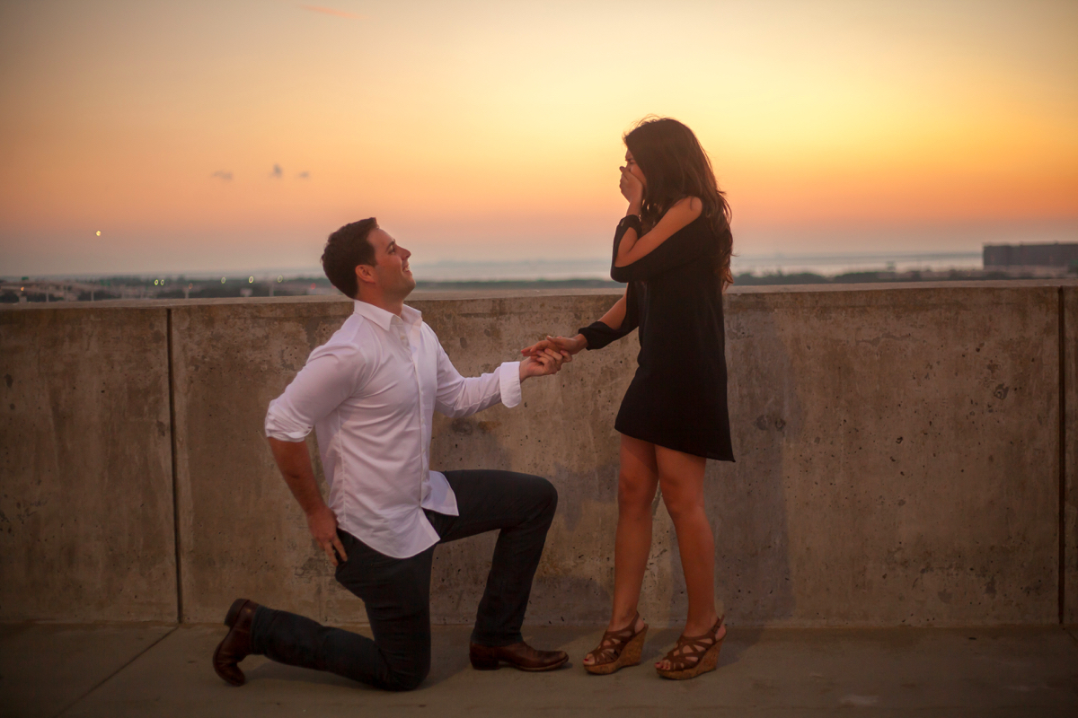 using-dog-to-propose-marriage-48