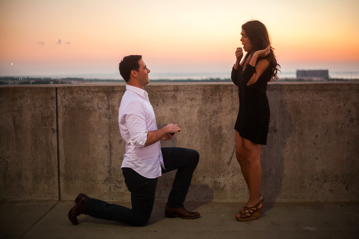 using-dog-to-propose-marriage-51