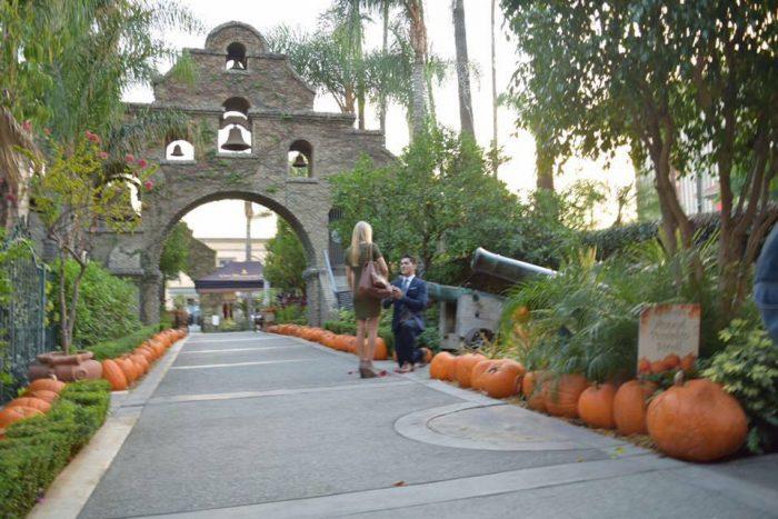 Wedding Proposal Ideas in The Mission Inn, Riverside, CA