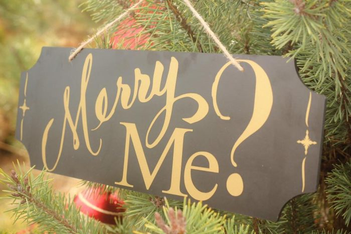 Marriage Proposal Ideas in Shelbyville Christmas Tree Farm