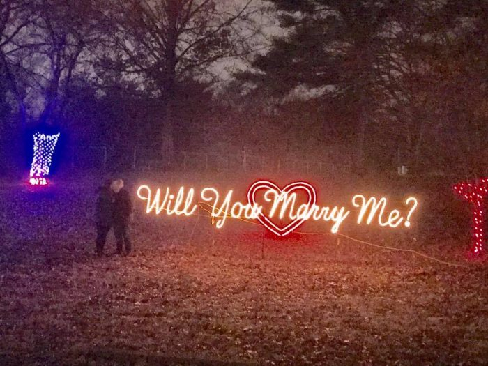 Quinn's Proposal in Tiles Park in St. Louis MO