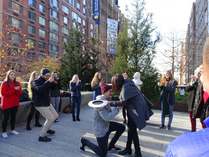 Marriage Proposal Ideas in The Highline, New York