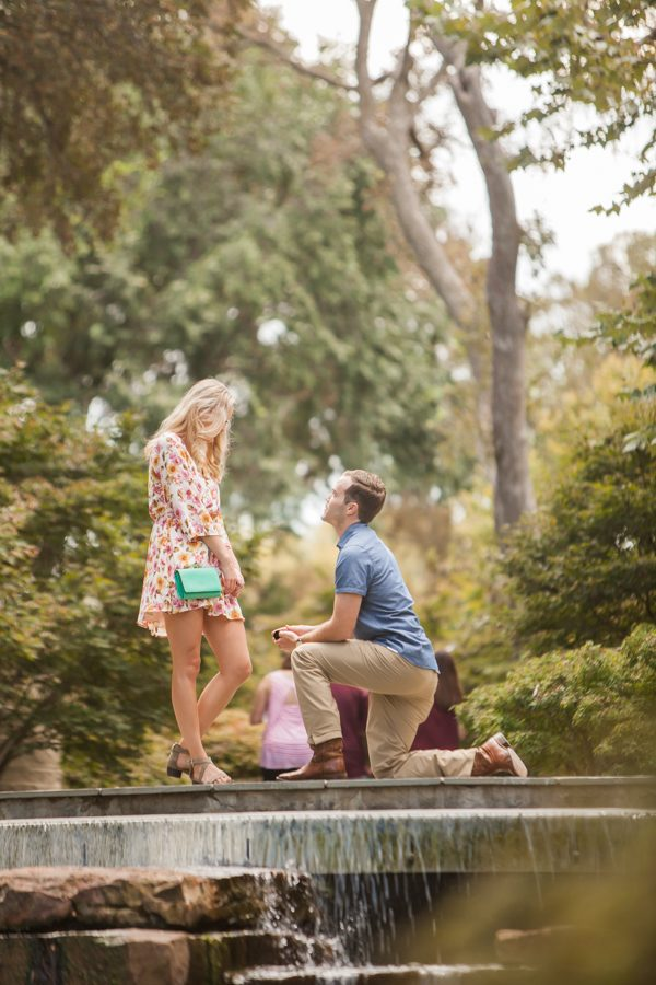 Engagement Proposal Ideas in The Dallas Arboretum