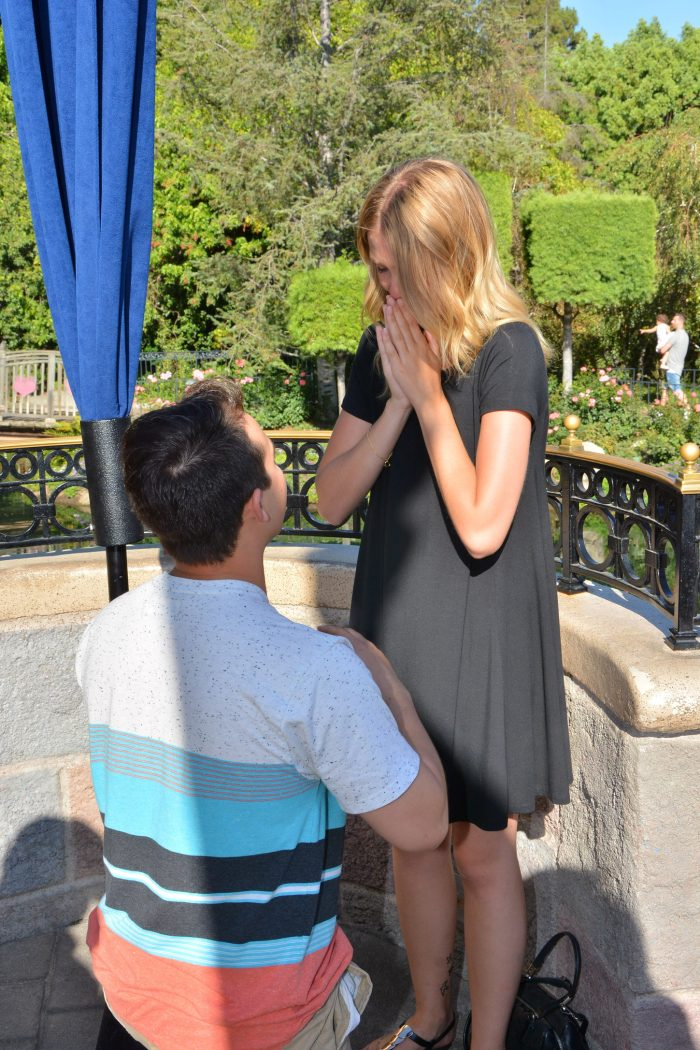 Proposal Ideas Disneyland, CA