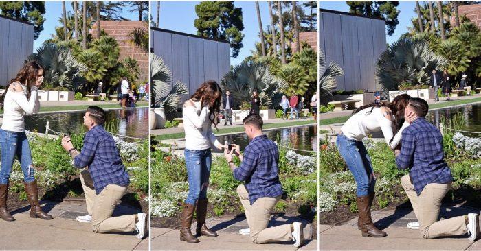 Proposal Ideas Balboa park