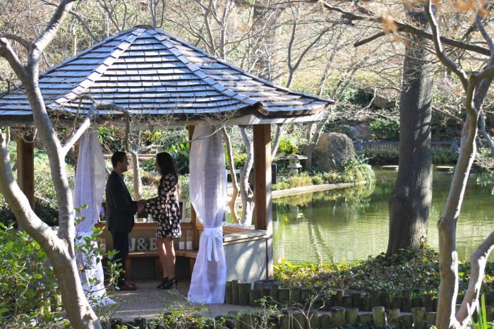 Where to Propose in Fort Worth Botanical Gardens