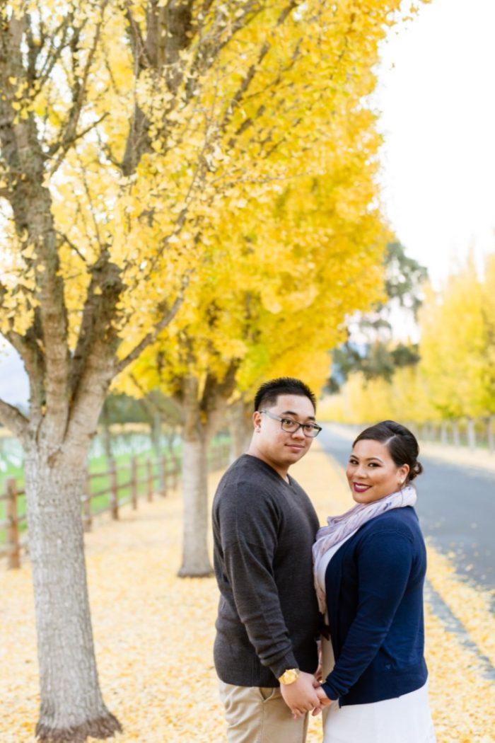 Wedding Proposal Ideas in Napa Valley, CA