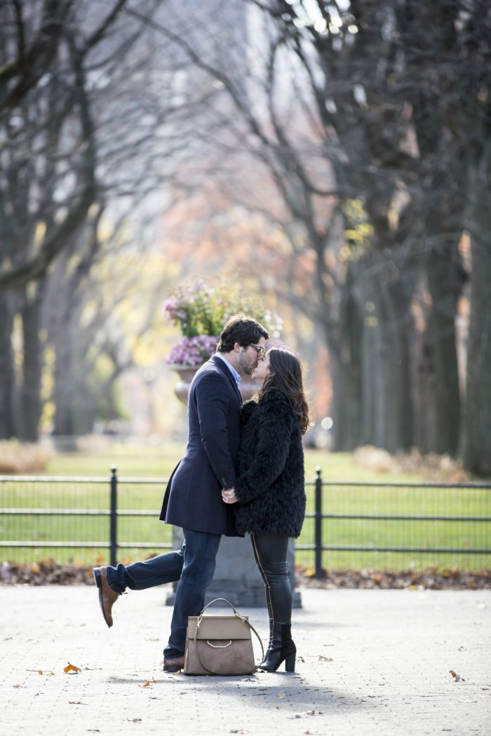 Wedding Proposal Ideas in Central Park