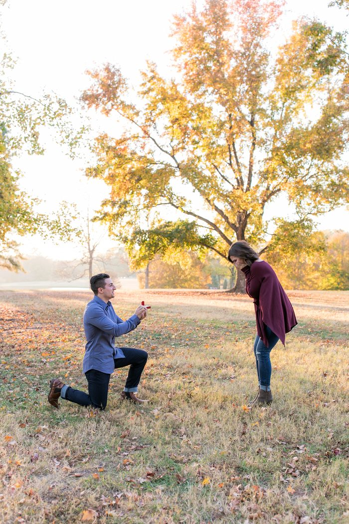 Engagement Proposal Ideas in South Carolina
