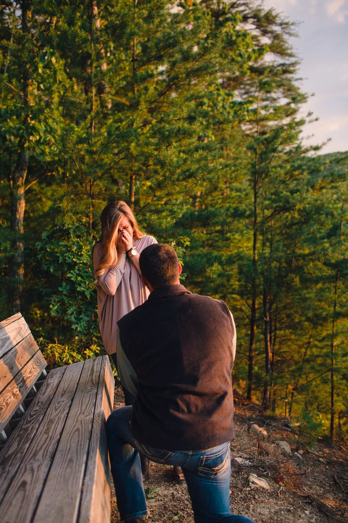 Engagement Proposal Ideas in Butterfly Gap Retreat, Tennessee