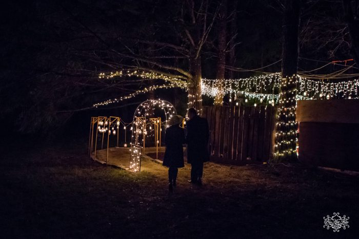 Marriage Proposal Ideas in Cousin's backyard forest