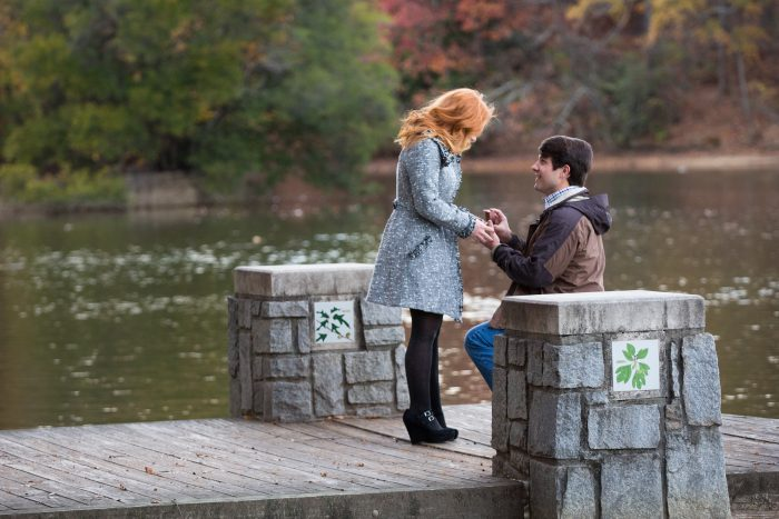 Proposal Ideas Piedmont Park in Atlanta, Georgia