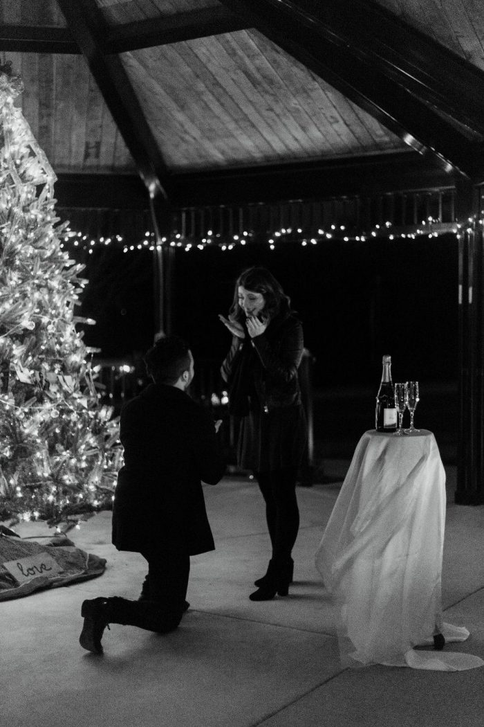 Wedding Proposal Ideas in Charlotte, NC