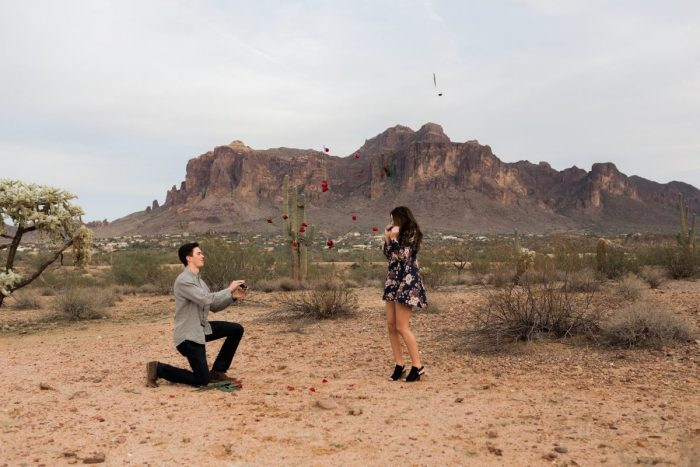 Proposal Ideas Arizona