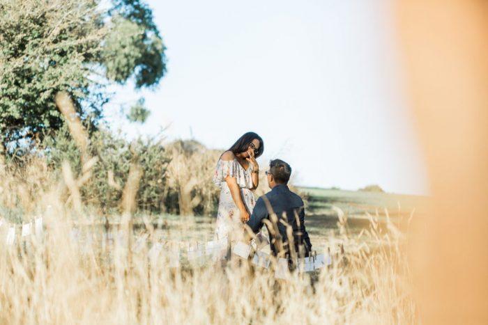 Marriage Proposal Ideas in Dandenong Ranges, Australia