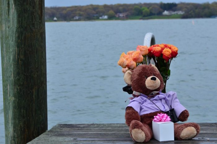 Marriage Proposal Ideas in North Fork, Long Island