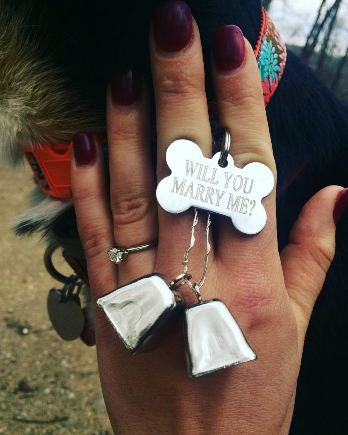 Anna Claire's Proposal in Hawksbill Craig in Boxely, Ar
