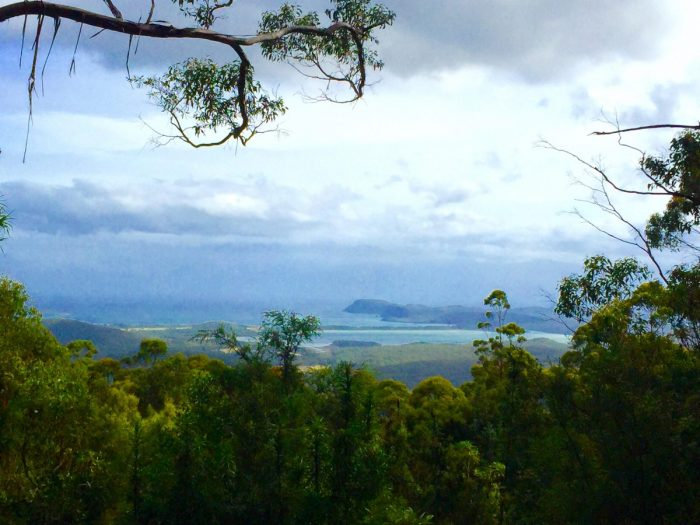Wedding Proposal Ideas in Bruny Island in Tasmania, Australia