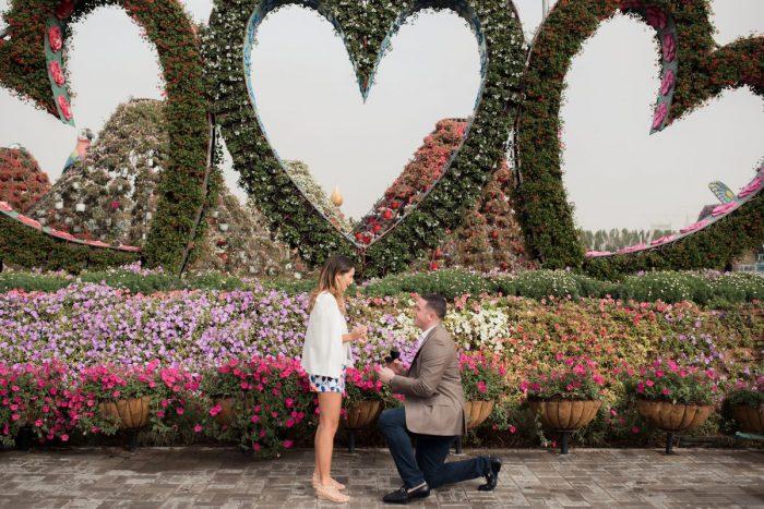 Proposal Ideas The Dubai Miracle Garden