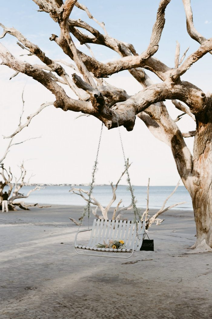 Where to Propose in Jekyll Island Ga