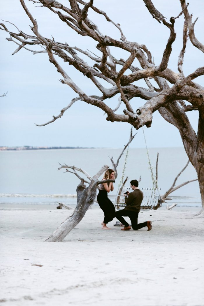 Engagement Proposal Ideas in Jekyll Island Ga