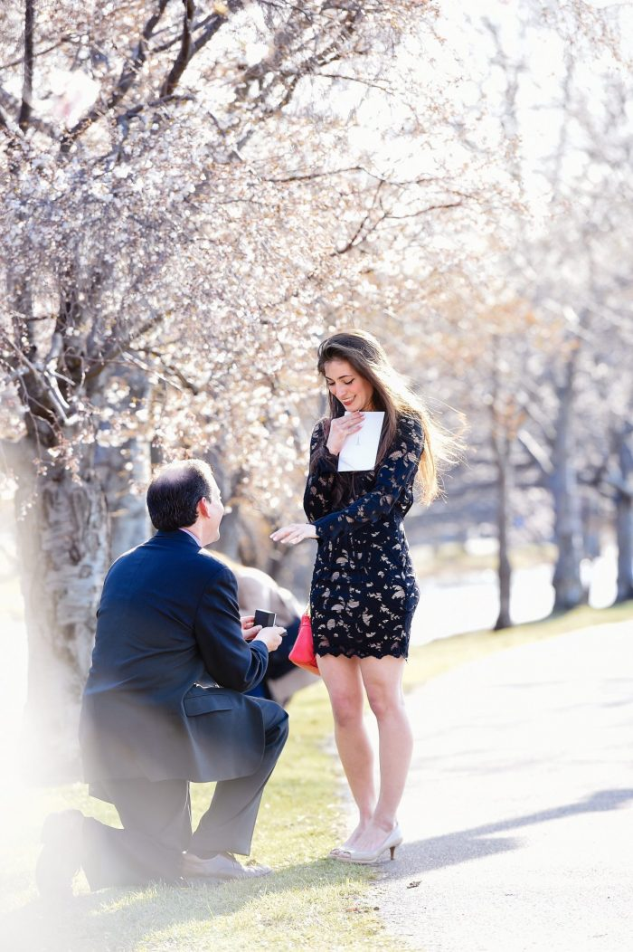 Janna's Proposal in Boston, Massachusetts