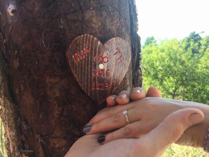 Victoria's Proposal in Lake Michigan