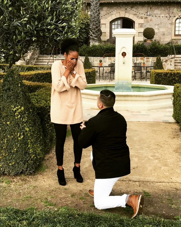 Wedding Proposal Ideas in St. Helena, CA at V. Sattui Winery