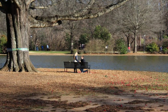 Where to Propose in Freedom Park in Charlotte, NC