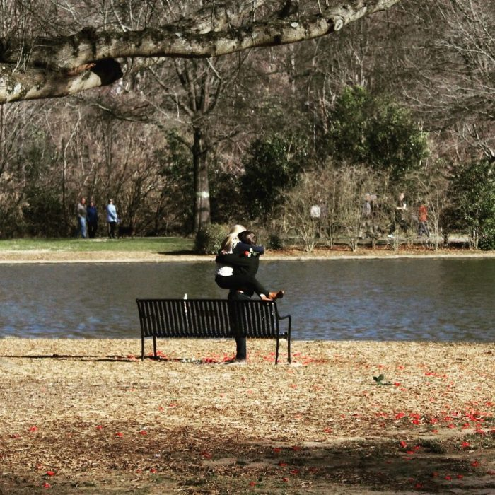 Lindsay Anne's Proposal in Freedom Park in Charlotte, NC