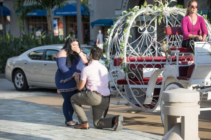 Marriage Proposal Ideas in St. Petersburg Florida