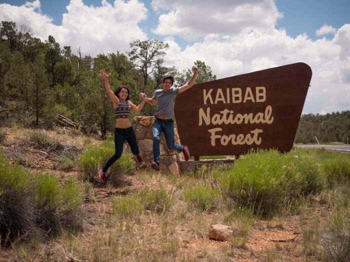 Karissa's Proposal in The Sante Fe National Forest