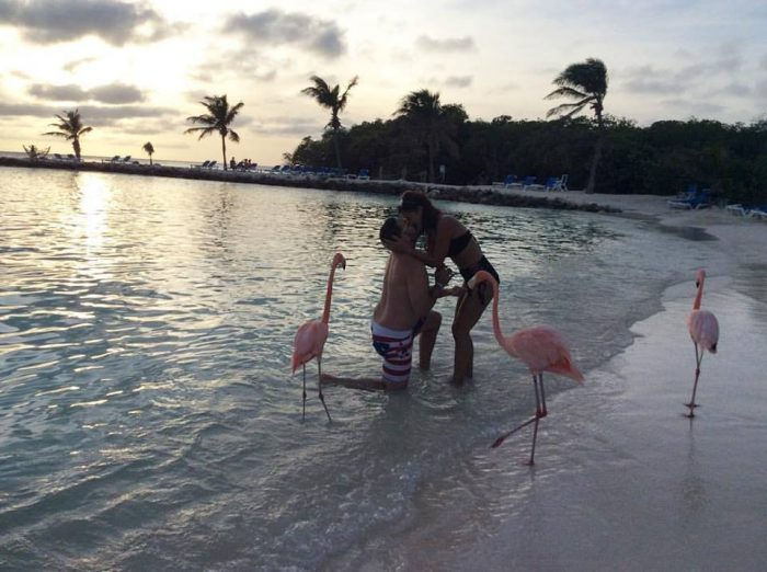 Proposal Ideas Flamingo Beach, Aruba