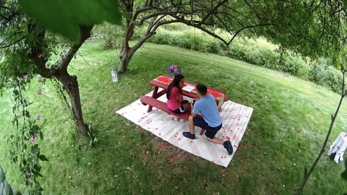 Iris's Proposal in Chelmsford, Massachusetts